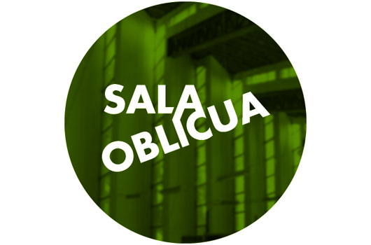 100222_salaoblicua